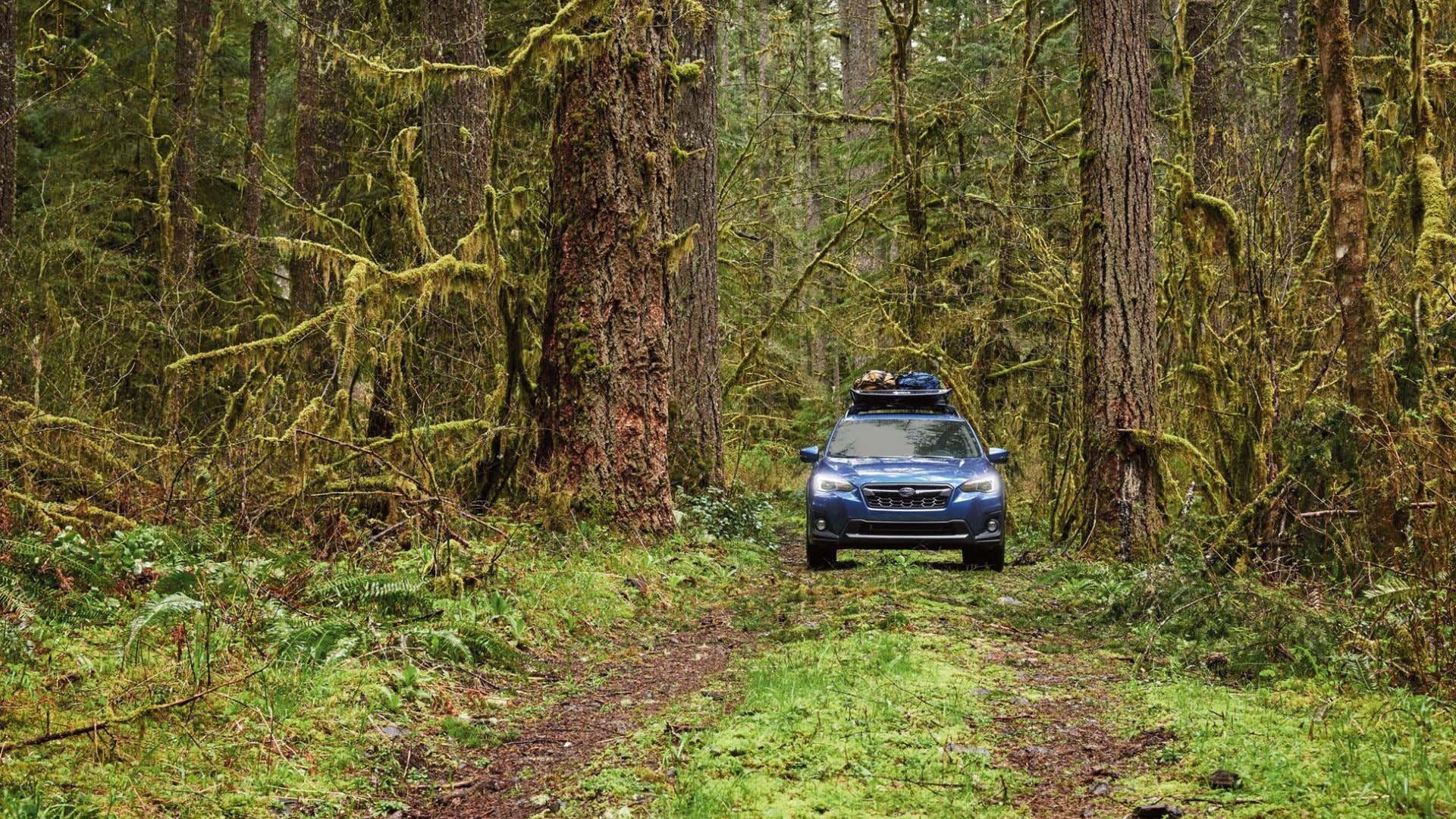A Subaru Crosstrek looking for a camping spot.