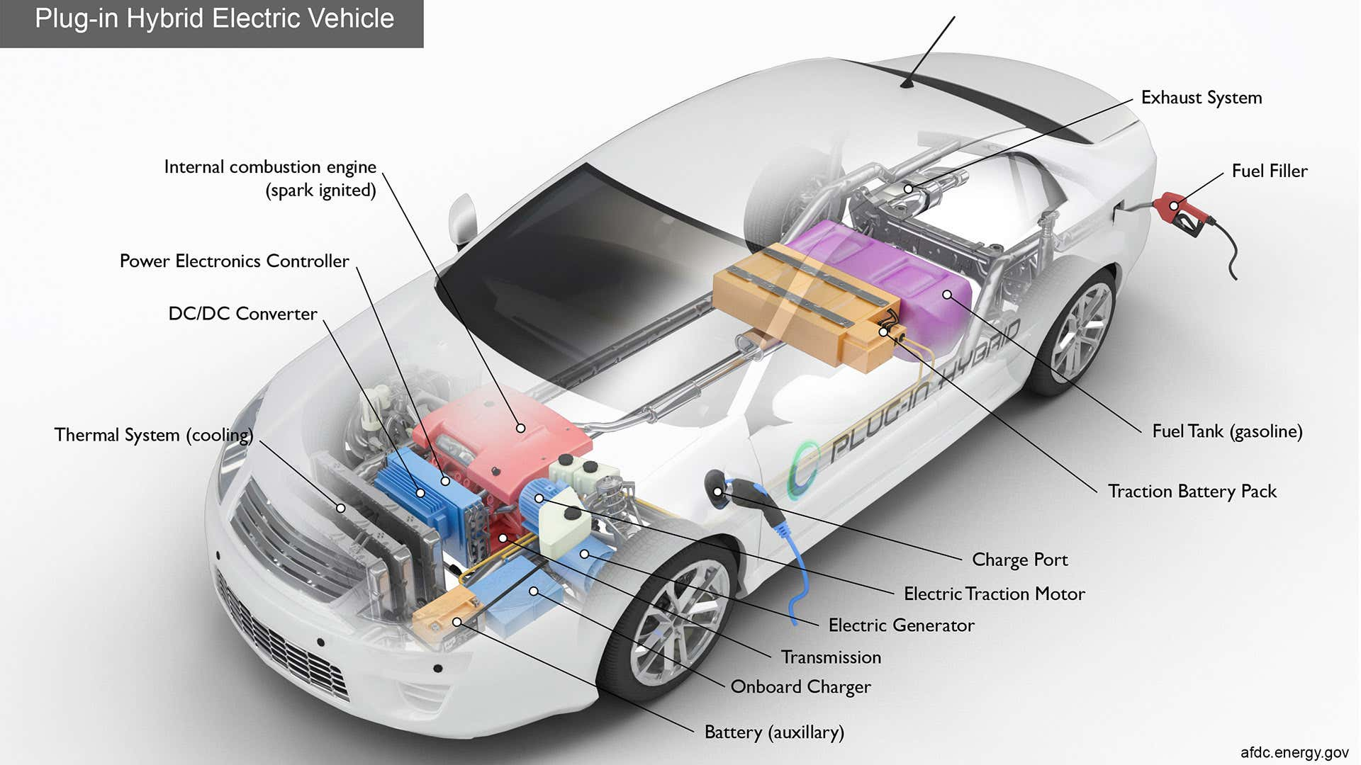 Plug-in hybrid plug ports are often located near the front quarter panel.