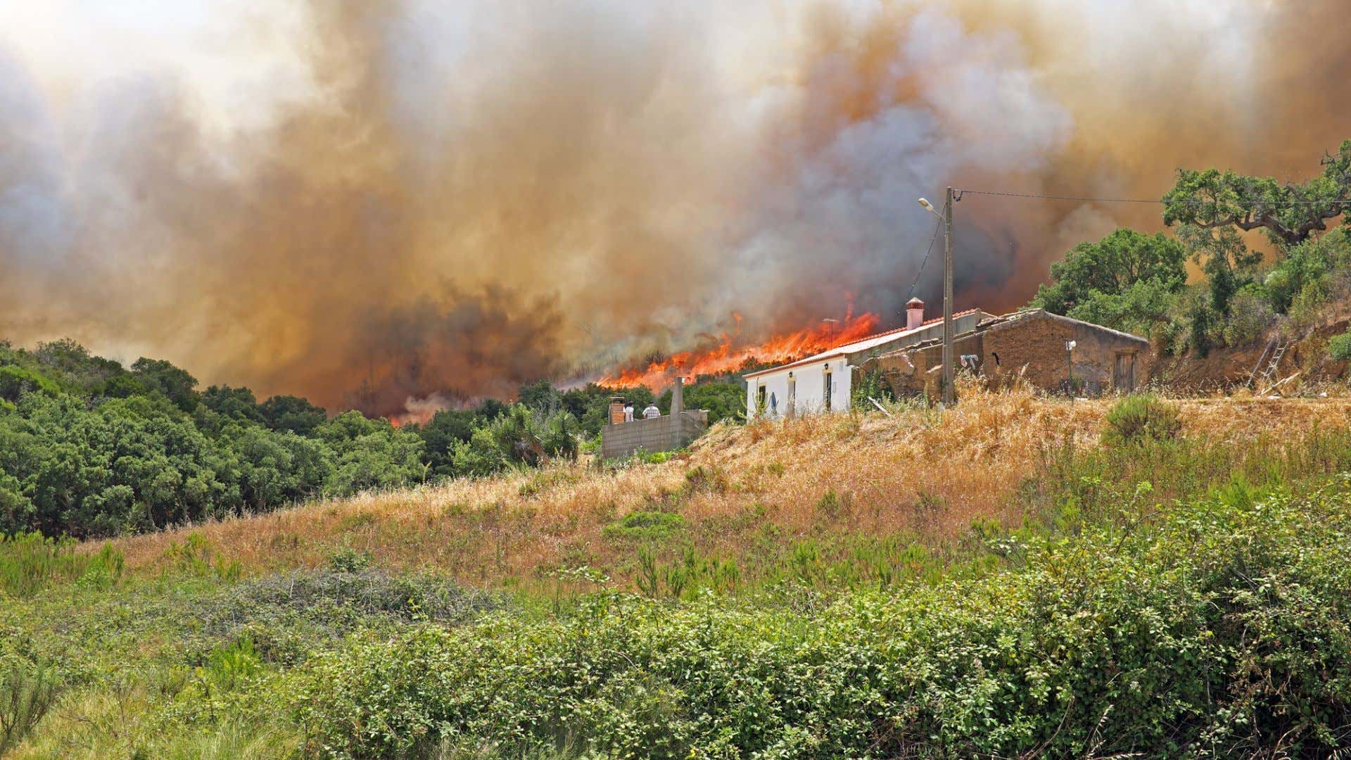 A wildfire threatens a house.