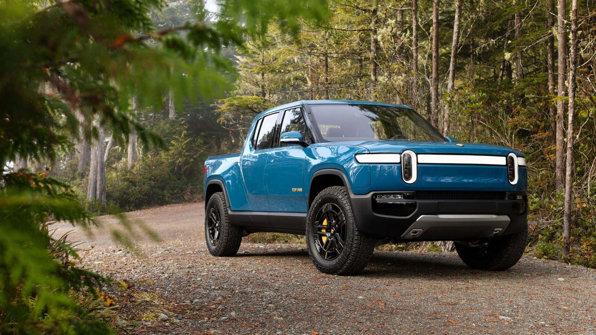 Rivian looking good among the forest in blue.