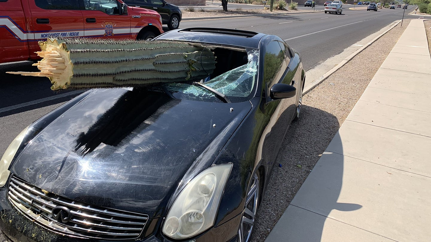 Cactus Crash Arizona July 2019 Hero